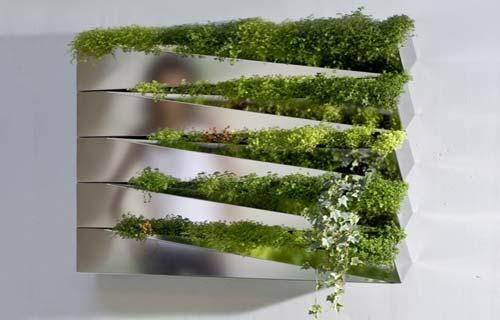 Giardini verticali domestici - Giardino verticale in casa ...