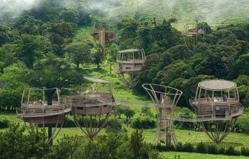 Treehouse case sugli alberi - Costruire case sugli alberi ...